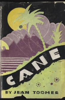 Cane_cover